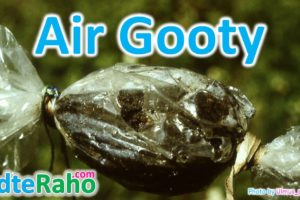 air-gooty-in-hindi-badteraho.com