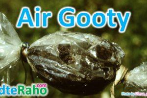air-gooty-in-hindi-badteraho.com